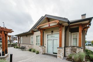"""Photo 25: 141 11305 240 Street in Maple Ridge: Cottonwood MR Townhouse for sale in """"Maple Heights"""" : MLS®# R2500243"""