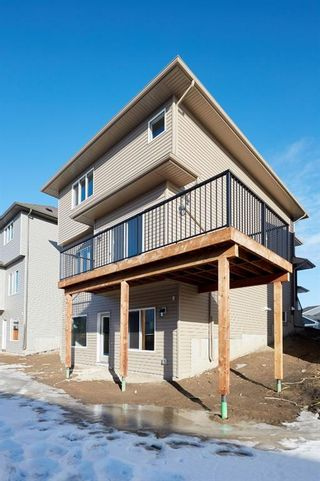 Photo 39: 51 Walden Place SE in Calgary: Walden Detached for sale : MLS®# A1051538