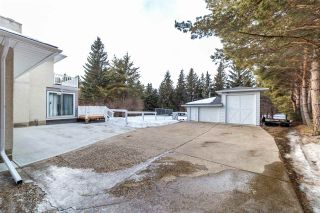 Photo 45: 12 Equestrian Place: Rural Sturgeon County House for sale : MLS®# E4229821