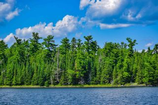 Photo 3: lot 2 Five Point Island in South of Kenora: Vacant Land for sale : MLS®# TB212084