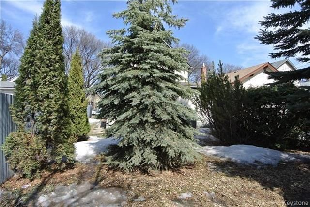Photo 17: Photos: 570 Aberdeen Avenue in Winnipeg: North End Residential for sale (4B)  : MLS®# 1809083