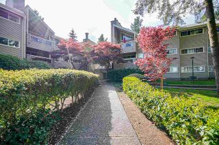 "Photo 28: 314 932 ROBINSON Street in Coquitlam: Coquitlam West Condo for sale in ""The Shaughnessy"" : MLS®# R2575721"