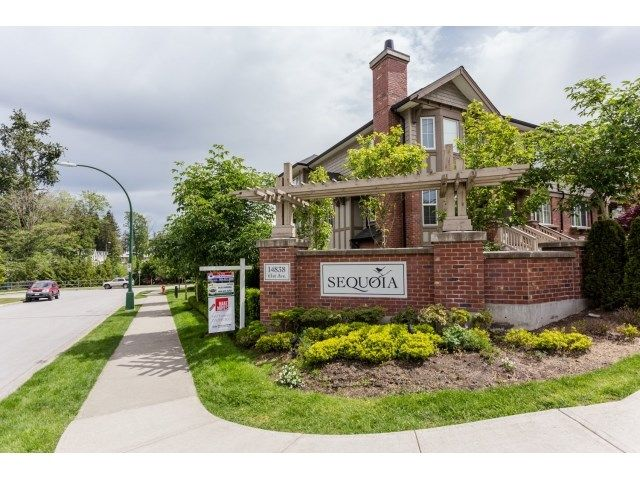 """Main Photo: 57 14838 61 Avenue in Surrey: Sullivan Station Townhouse for sale in """"SEQUOIA"""" : MLS®# R2067661"""