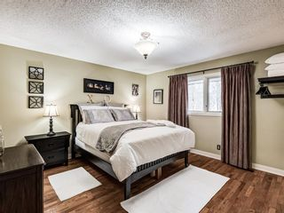 Photo 22: 48 Wolf Drive: Bragg Creek Detached for sale : MLS®# A1098484