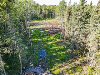 Photo 9: 127 Eagle Bay Road in Kenora: Vacant Land for sale : MLS®# TB202857