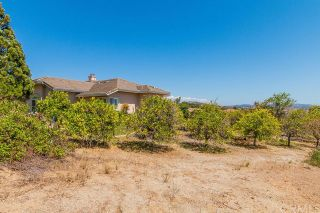Photo 30: FALLBROOK House for sale : 3 bedrooms : 2201 Dos Lomas