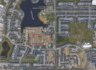 Photo 10: 4409 Suzanna Crescent in Edmonton: Zone 53 House for sale : MLS®# E4221391