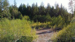"Photo 9: 12905 246 Street in Maple Ridge: Websters Corners Land for sale in ""Allco Park"" : MLS®# R2576635"