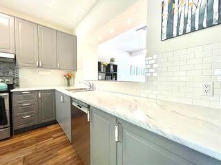 Photo 9: 279 ALBANY Street in Winnipeg: Deer Lodge Residential for sale (5E)  : MLS®# 202112609