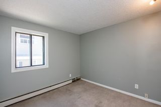 Photo 12: 201 611 67 Avenue SW in Calgary: Kingsland Apartment for sale : MLS®# A1124707