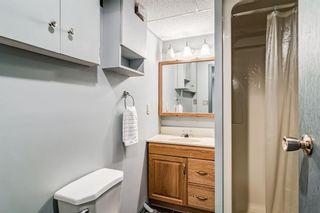 Photo 28: 2923 Doverville Crescent SE in Calgary: Dover Semi Detached for sale : MLS®# A1146625