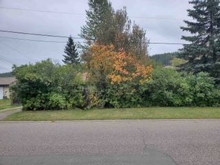 Photo 7: 2680 JASPER Street in Prince George: South Fort George House for sale (PG City Central (Zone 72))  : MLS®# R2621021