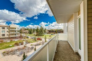 Photo 20: 308 3717 42 Street NW in Calgary: Varsity Apartment for sale : MLS®# A1105882