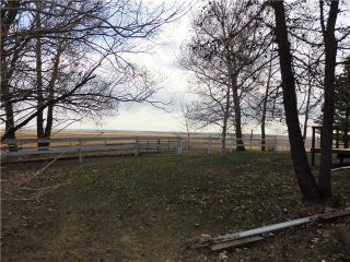 Photo 5: 29342 RANGE RD 275: Rural Mountain View County Residential Detached Single Family for sale : MLS®# C3614784