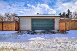 Photo 39: 66 Farnham Drive SE in Calgary: Fairview Detached for sale : MLS®# A1072222
