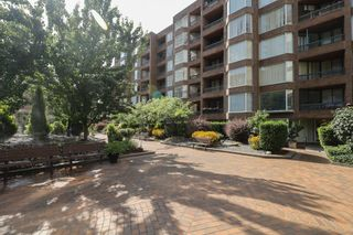 Photo 12: 405 1330 BURRARD Street in Vancouver: Downtown VW Condo for sale (Vancouver West)  : MLS®# R2612588