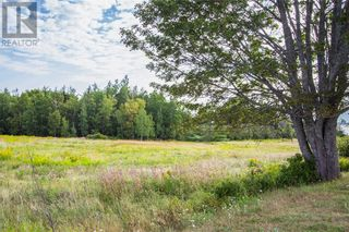 Photo 3: Lot Route 935 in Wood Point: Vacant Land for sale : MLS®# M132789