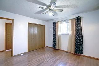 Photo 16: 317 Big Springs Court SE: Airdrie Detached for sale : MLS®# A1152002