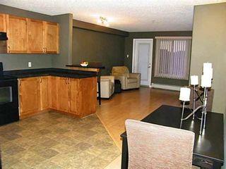 Photo 7: 229 111 EDWARDS Drive in Edmonton: Zone 53 Condo for sale : MLS®# E4225508