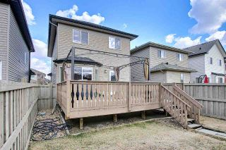 Photo 41: 9411 Stein Way in Edmonton: Zone 14 House for sale : MLS®# E4240303