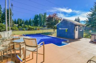 Photo 8: 770 Petersen Rd in : CR Campbell River South House for sale (Campbell River)  : MLS®# 864215