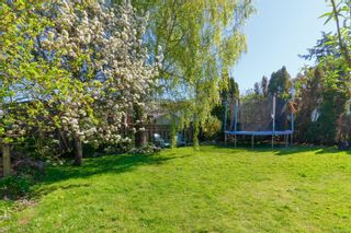 Photo 33: 326 Obed Ave in : SW Gorge House for sale (Saanich West)  : MLS®# 873865