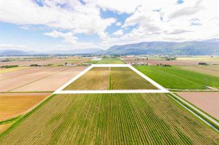 Photo 8: 4081 DIXON Road: Agri-Business for sale in Abbotsford: MLS®# C8038207