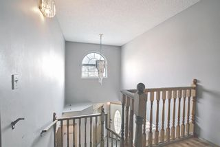 Photo 35: 766 Coral Springs Boulevard NE in Calgary: Coral Springs Detached for sale : MLS®# A1136272