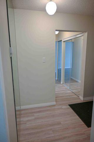 Photo 3: 204 10320 113 Street in Edmonton: Zone 12 Condo for sale : MLS®# E4250245