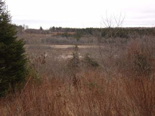 Photo 5: LOT PLEASANT VALLEY in Yarmouth: County Hwy 340 Vacant Land for sale : MLS®# 4868156