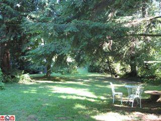 Photo 9: 19616 80TH AV in Langley: House for sale : MLS®# F1020546
