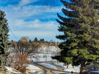 Photo 2: 920 30 Avenue NW in Calgary: Cambrian Heights House for sale : MLS®# C3650159