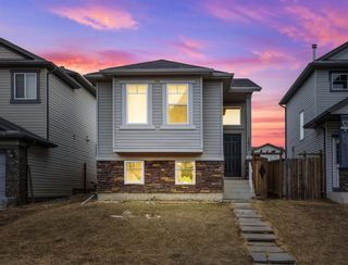 Main Photo: 157 Covebrook Place NE in Calgary: Coventry Hills Detached for sale : MLS®# A1086734