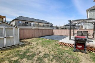 Photo 47: 920 Windhaven Close: Airdrie Detached for sale : MLS®# A1100208