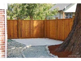 Photo 7: 4 1731 Albert Ave in VICTORIA: Vi Jubilee Condo for sale (Victoria)  : MLS®# 673061