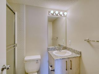 Photo 34: 4415 4641 128 Avenue NE in Calgary: Skyview Ranch Apartment for sale : MLS®# A1147508