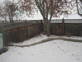 Photo 33: 45 Amherst Crescent in St. Albert: House for sale or rent