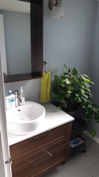 Photo 4: 813 MILLBOURNE Road E in Edmonton: Zone 29 House Half Duplex for sale : MLS®# E4252431