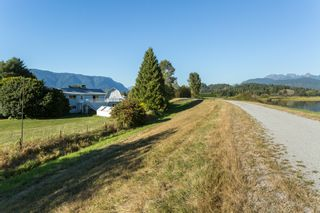 Photo 6: 19558 FENTON ROAD in PITT MEADOWS: Home for sale : MLS®# V1083507