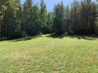 Photo 11: TBD Crystal Key Crescent: Rural Wetaskiwin County Rural Land/Vacant Lot for sale : MLS®# E4212671