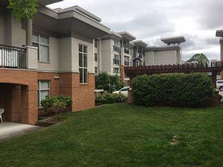 Photo 12: 216 33546 HOLLAND AVENUE in Abbotsford: Central Abbotsford Condo for sale : MLS®# R2180058