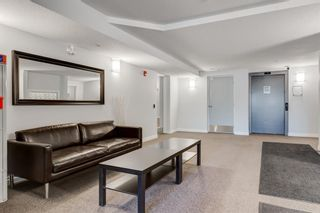 Photo 31: 307 1631 28 Avenue SW in Calgary: South Calgary Apartment for sale : MLS®# A1131920