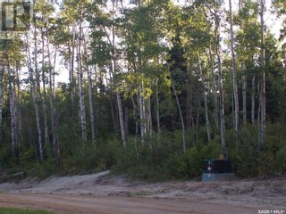 Photo 3: Timbuctu Estates in Christopher Lake: Vacant Land for sale : MLS®# SK846179