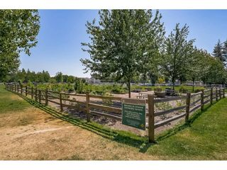 """Photo 26: 109 20125 55A Avenue in Langley: Langley City Condo for sale in """"BLACKBERRY LANE 11"""" : MLS®# R2617940"""