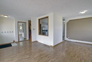 Photo 19: 4911 52 Avenue: Redwater House for sale : MLS®# E4260591