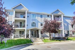 Photo 39: 105 5105 Valleyview Park SE in Calgary: Dover Apartment for sale : MLS®# A1138950