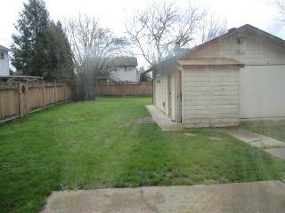 Photo 13: 23444 DEWDNEY TRUNK Road in Maple Ridge: Cottonwood MR House for sale : MLS®# R2048819