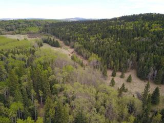 Photo 12: IN ROCKY VIEW COUNTY in Rural Rocky View County: Rural Rocky View MD Land for sale : MLS®# A1065924