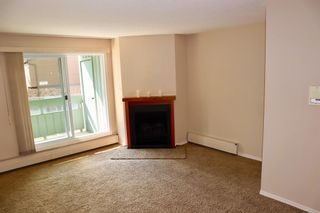 Photo 10: 9206 315 SOUTHAMPTON Drive SW in Calgary: Southwood Apartment for sale : MLS®# A1024314