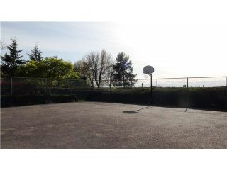Photo 16: 3031 Williams Road in Richmond: Seafair Townhouse for rent